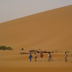 La magnética atracción del desierto
