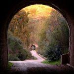 Vías verdes: de vías de tren a caminos cicloturistas