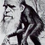 Darwin y su teoría de la evolución