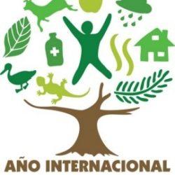 2011 – Año Internacional de los Bosques