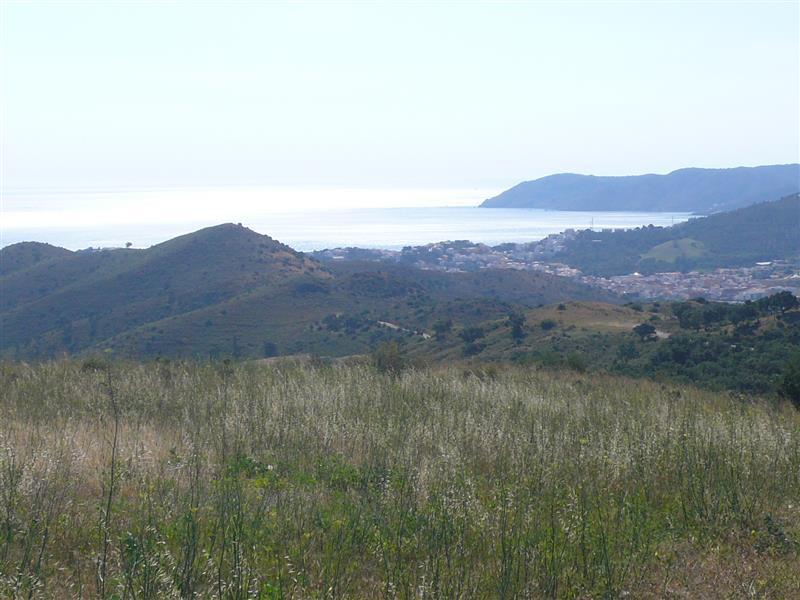 Pirineo1