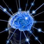 Neurociencia y espiritualidad cada vez más cerca
