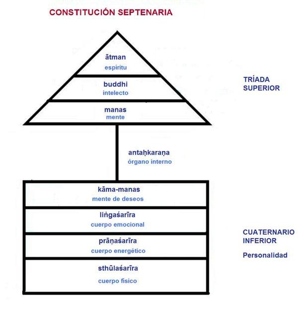constitucion septenaria esquema