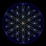Biocentrismo: conciencia para comprender el universo