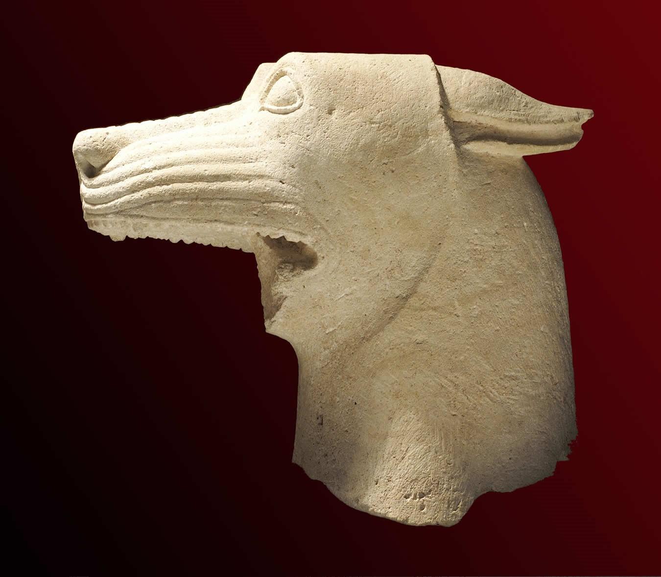 cabeza de lobo llamada de El Pajarillo en el museo arqueológico de Jaen