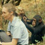 El sueño de Jane Goodall