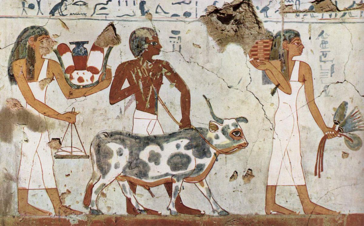 Concepción del hombre en Egipto 1