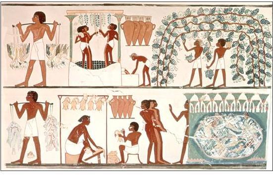 Concepción del hombre en Egipto 4