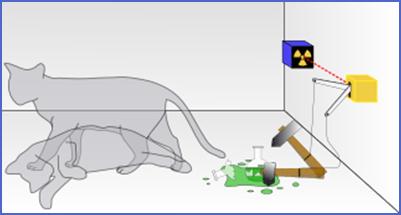 paradoja gato shrodinger