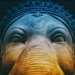 El elefante y los seis ciegos