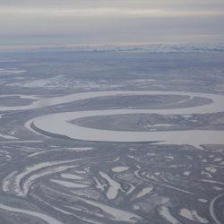 Alaska: la selva blanca
