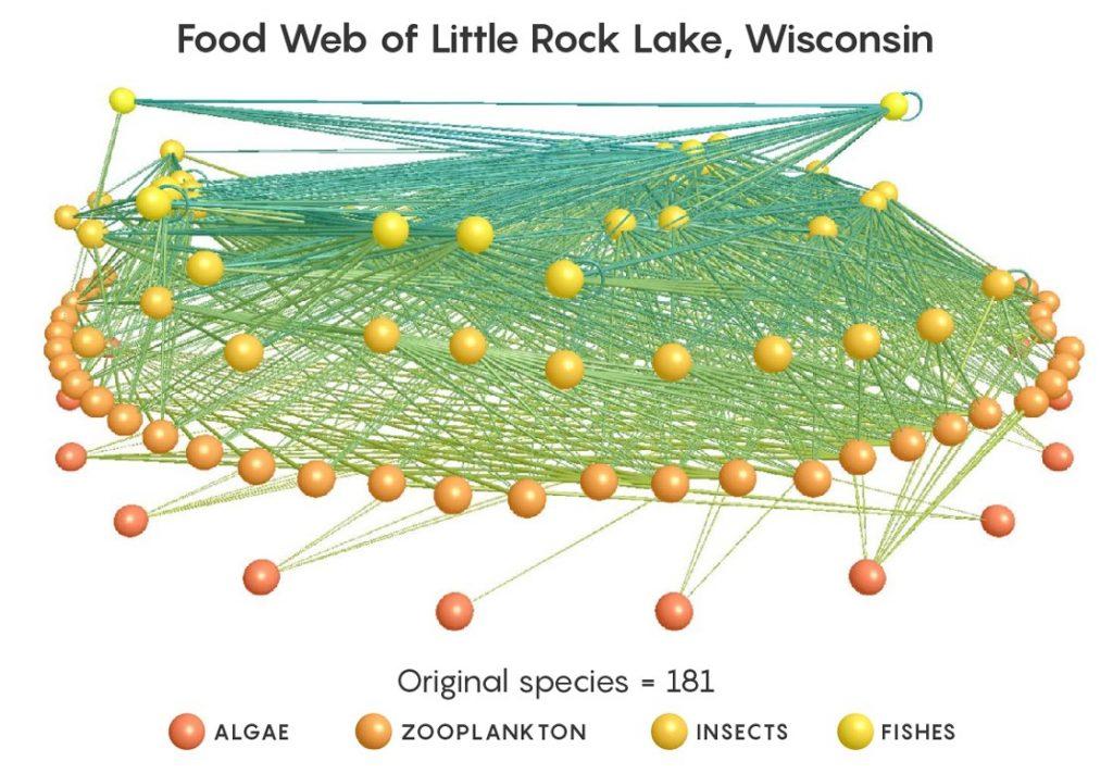 Figura 3. Modelo 3D de las interacciones tróficas en el lago Little Rock, Wisconsin (Estados Unidos), mostrando 181 nodos y 2375 conexiones (Yoon et al., 2005).